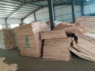 Shandong Hongjie Industry Co.,ltd