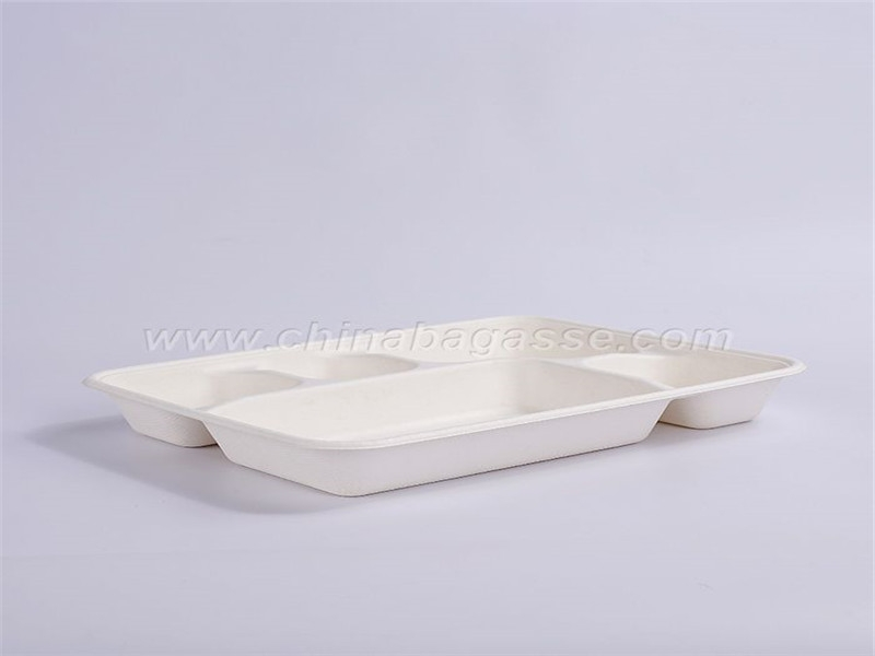 Sugarcane Lid For 5 Compartment Deep Tray
