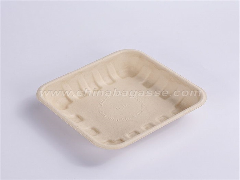Paper Biodegradable 14 D Tray