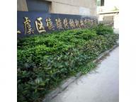 Shangyu Dejun Transmission Co., Ltd.