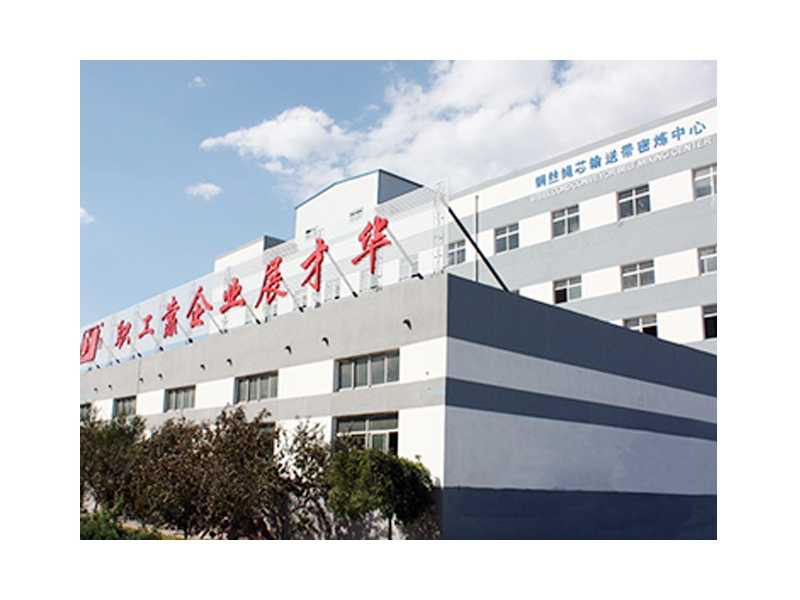 Baoding Huayue Rubber Belts Co., Ltd.