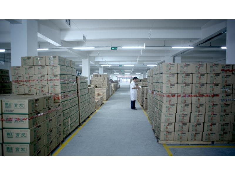 Bawang (guangzhou) Co., Ltd