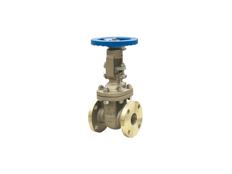 NAB C95800 gate valve