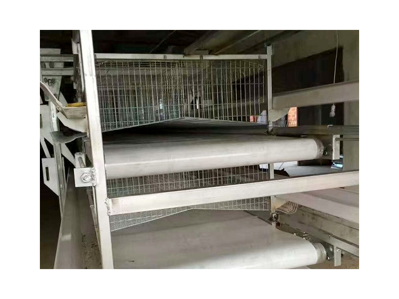 Automatic laying hen culture equipment
