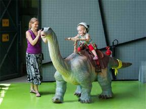 Apatosaurus Walking Ride(AR-99)