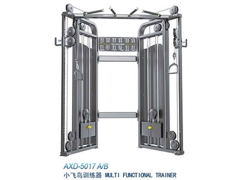 Multi functional trainer