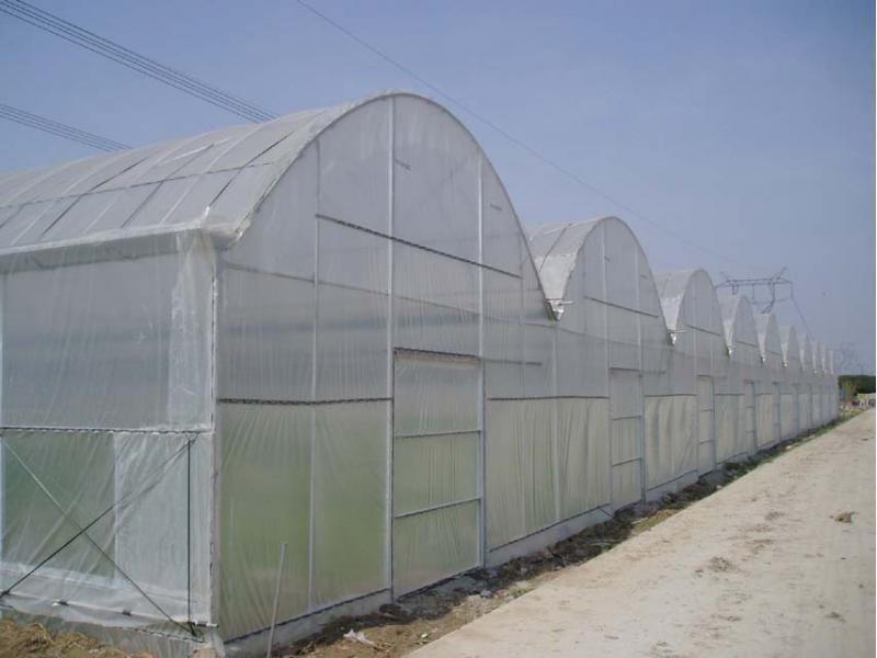 GLP8432 Vegetable Meat Flower Culture Multi-span Intelligent Greenhouse Steel Pipe Fittings Set of D