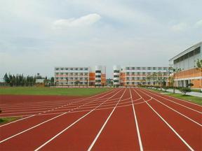 Polyurethane PU plastic sports track