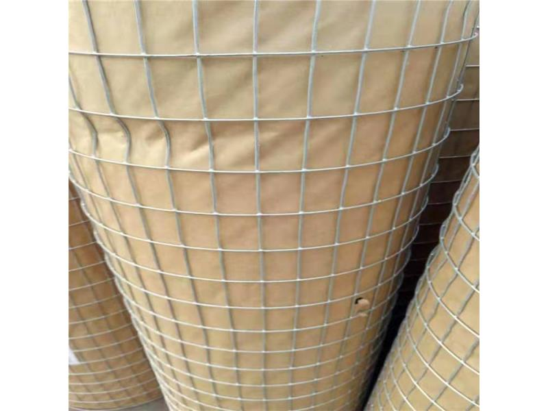 Low carbon steel wire mesh, culture net, galvanized welded wire mesh, decorative plastering net