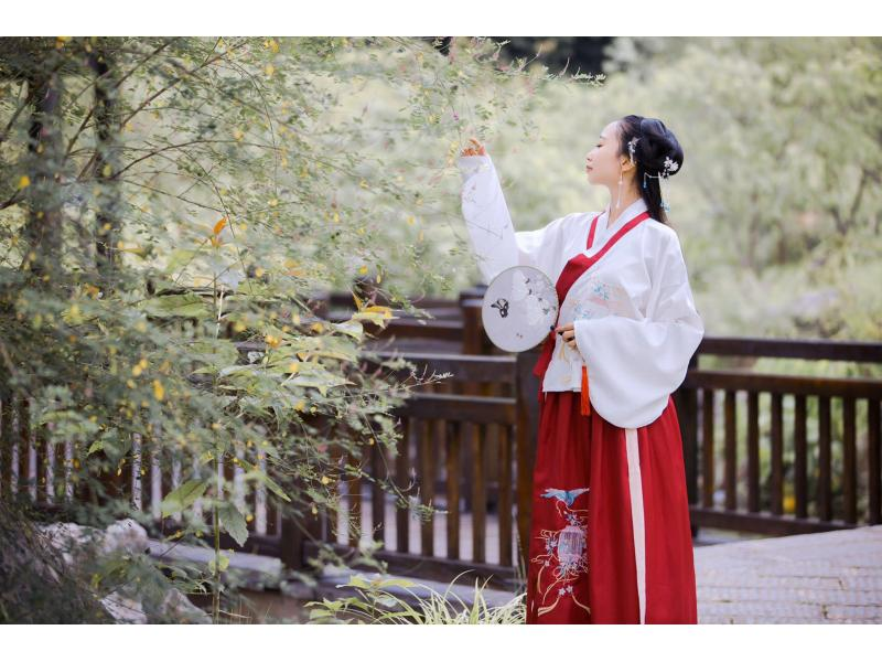 [Woven] Original Chinese element improved Hanfu female Wei Jin Chinese style suit daily wear