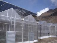 Venlo PC Sheet Greenhouse Agricultur Flower Greenhouse