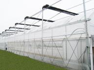 Multi-span Plastic Fim Greenhouse Agricultur Flower Greenhouse
