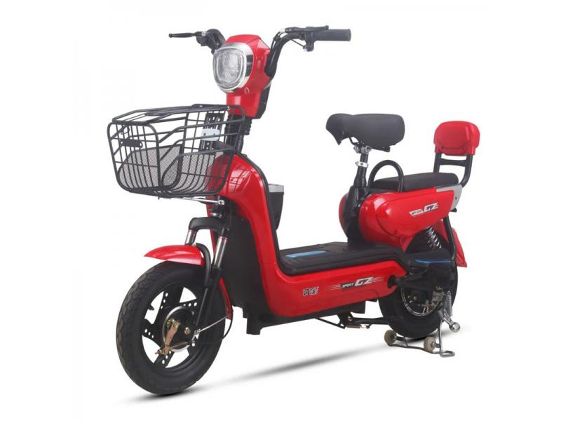Electric Motorcycle Scooter with 48V Storage Battery