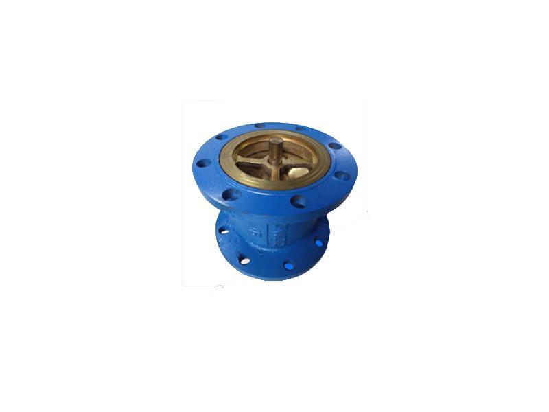 Silence check valve