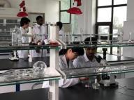 Weifang Dayi Biotechnology Co. Ltd