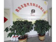 Qingdao Feng Ying Xiu  Hair Products Co.,ltd