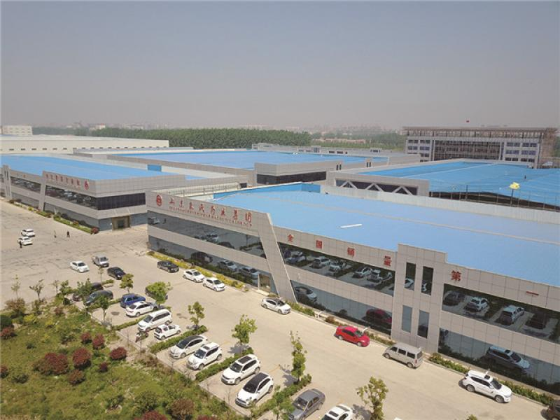 Shandong Zhushi Pharmaceutical Group Co., Ltd