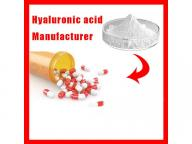 Manufacturer GMP DMF Best Price Hyaluronic acid