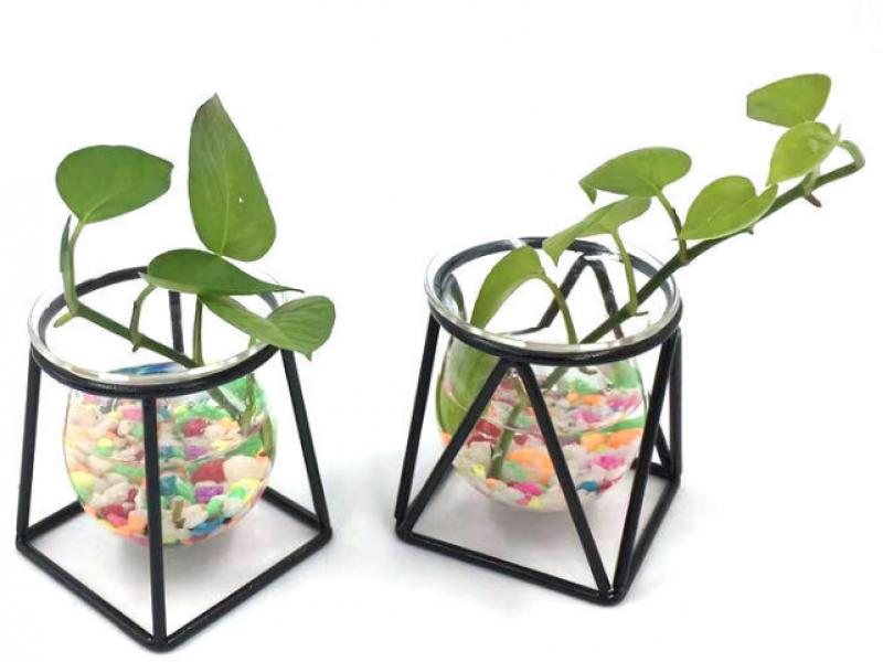 Creative hanging hydroponic vase iron frame