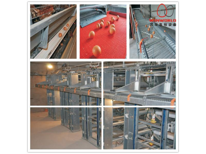 Cheap Design Layer Chicken Cages for Kenya Poultry Farm