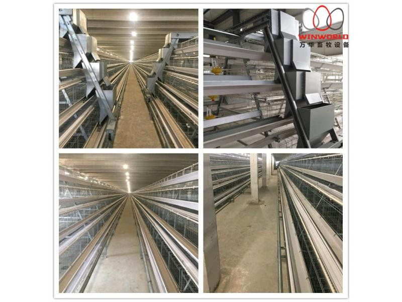 Uganda Poultry Chicken Cage Battery Cages Laying Hens Poultry for Sale