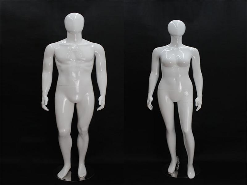 PC whole body model