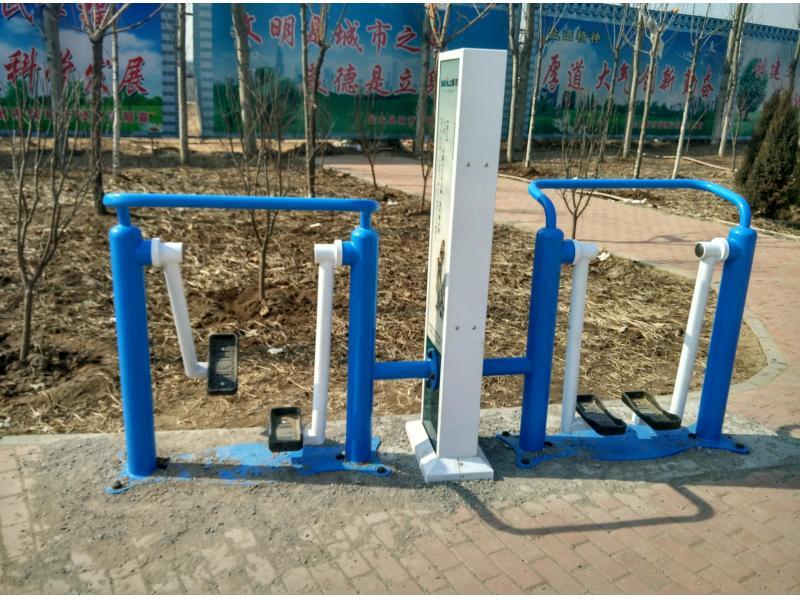Chinese Outdoor Leisure Fitness Equipment Two-man Walking Machine