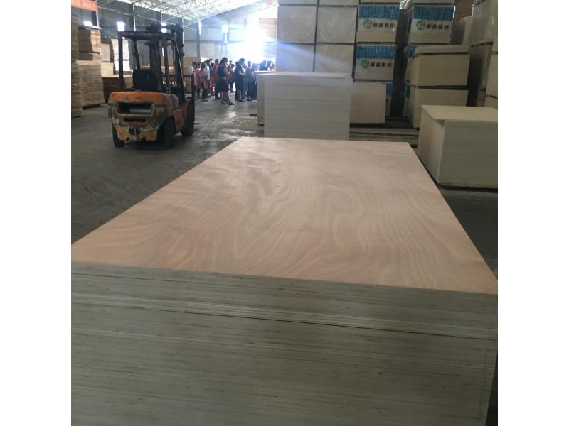 Linyi Houlei Industrial Co., Ltd.
