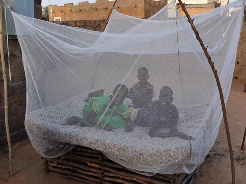 Africa Quadrate Mosquito Net