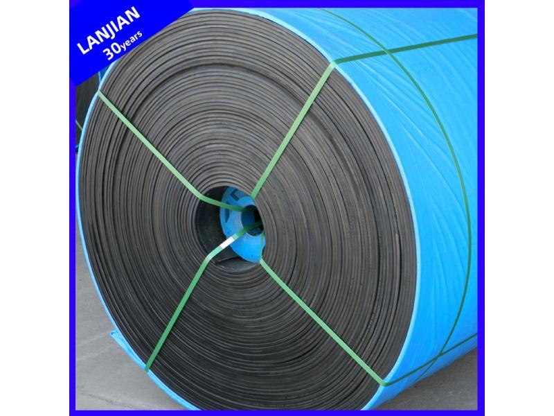 Acid Alkali Resistant Conveyor Belting for Chemical Plant/Fertilizer Plant/Paper-Making Factory