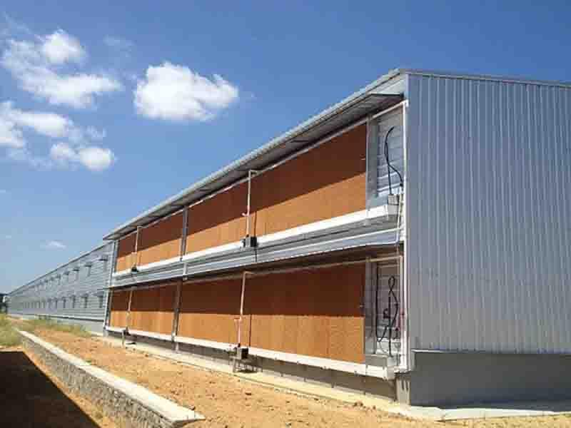 Agricultural Prefabricated Steel Structures Sheds Chicken Farm Building Poultry House