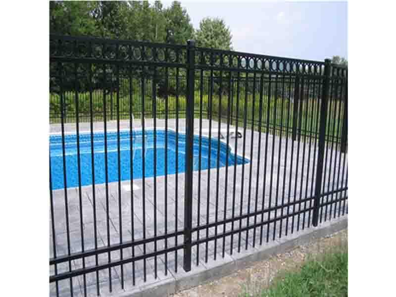 Powder Coated Decorative Iron Fence for Garden(ISO 9001 Factory)