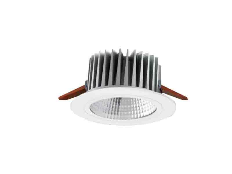 LED Downlight P5