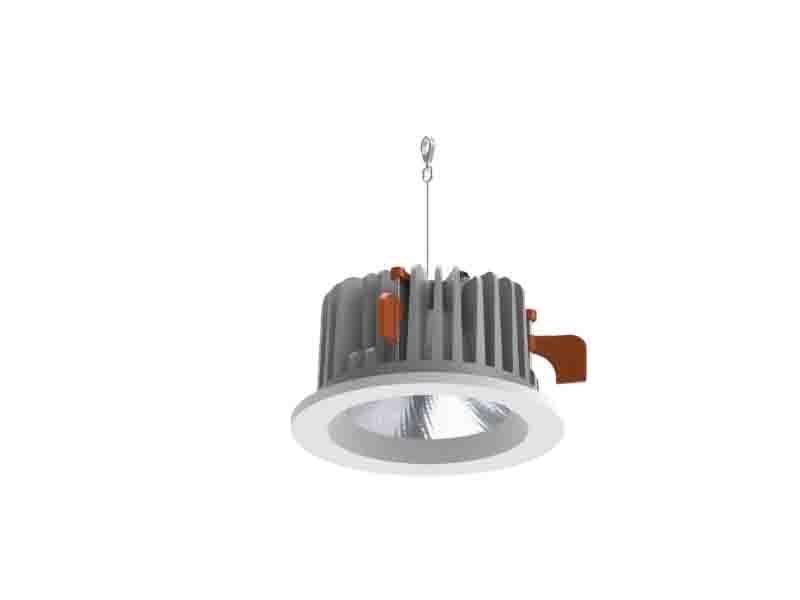 LED Downlight P8