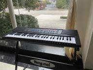 54 Key Standard Electronic Organ Piano Keyboard