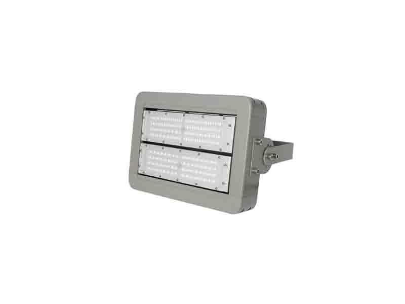 LED Flood Light (WSFL06)