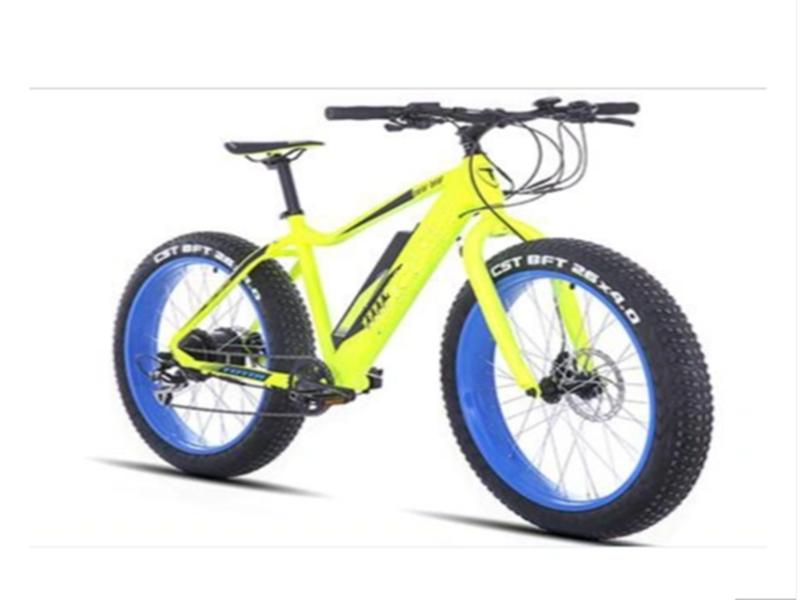 Electric Alloy Fat Tire Bike with Lithium Battery and Ba Fang Motor