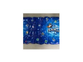 Air Shipping Use---dry Ice Cooler Gel Bag for Fresh Food Frozen(We're Factory in Guangzhou)