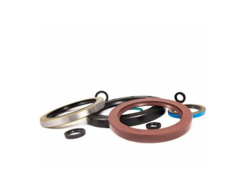 FKM EPDM Silicone PU NBR Neoprene Rubber Oil Seal
