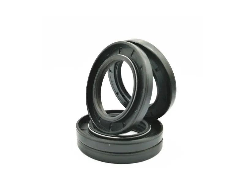 China Supplier Tc Oil Seal Cross Reference Framework Hydraulic Seals