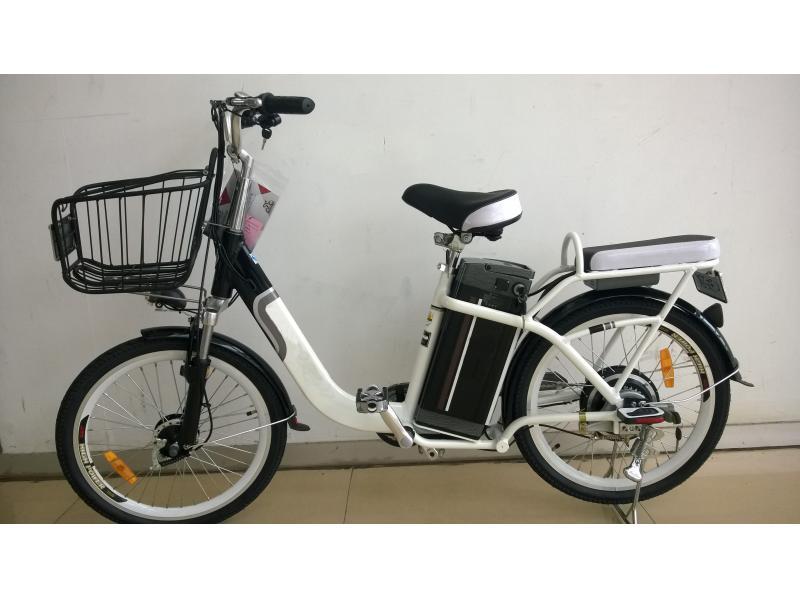 Long Range Ebike TDL1401Z