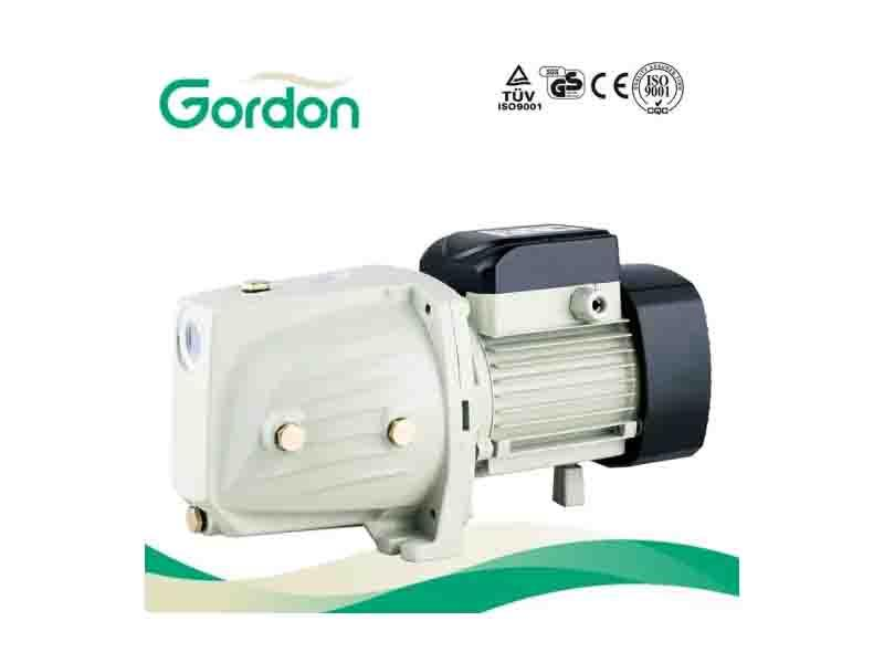Garden Copper Wire Self-Priming Jet Pump with Auto Spare Part