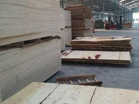 Commercial Plywood with Competitive Price