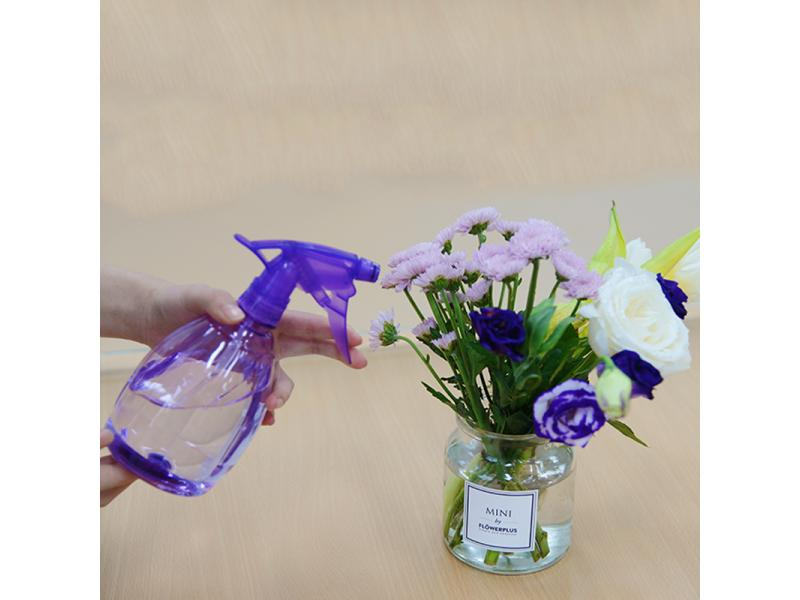 Plastic Hand Pressure Trigger Sprayer