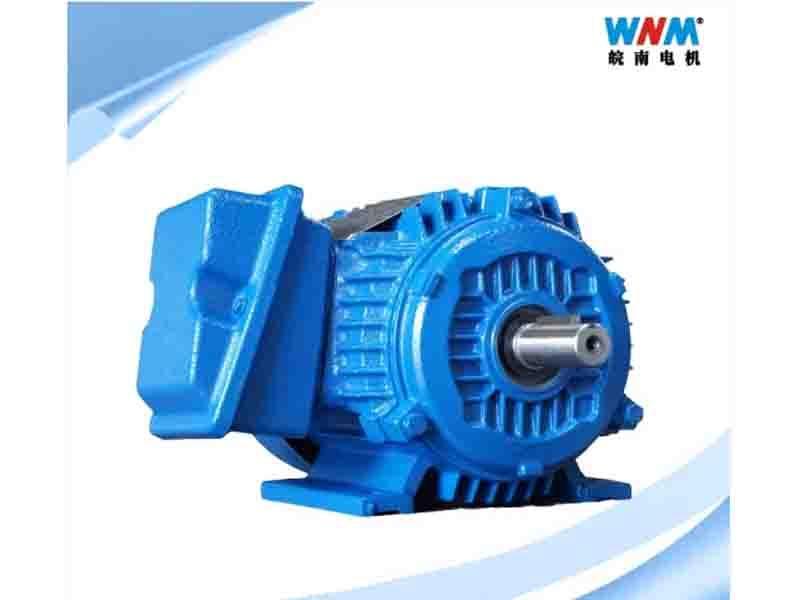 Nep CSA UL Canada Certificated Tefc Jm Jp 230/460V 575V 60Hz NEMA Standard Motor of Cast Iron Frame