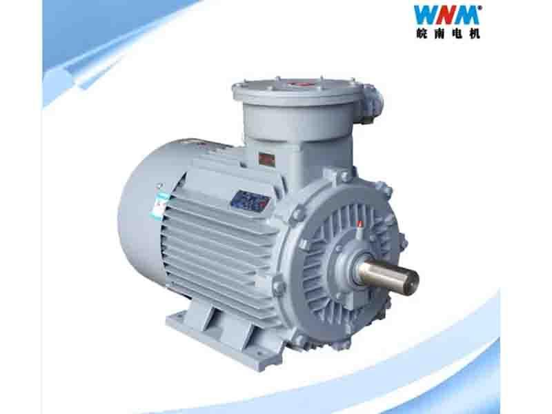 IEC Standard IE1 IE2 IE3 IE4 Three Phase High Efficiency Induction Electric AC Series Motor for Fans
