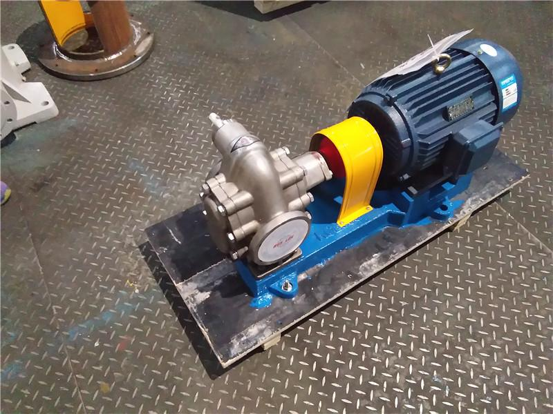 KCB300 Stainless Steel Gear Pump