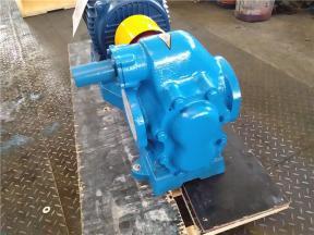 Gear Oil Transfer Pump for Lubricating Oil/Diesel Oil/Fuel Oil/Crude Oil/Heavy Oil/Mechanical Oil/Pe