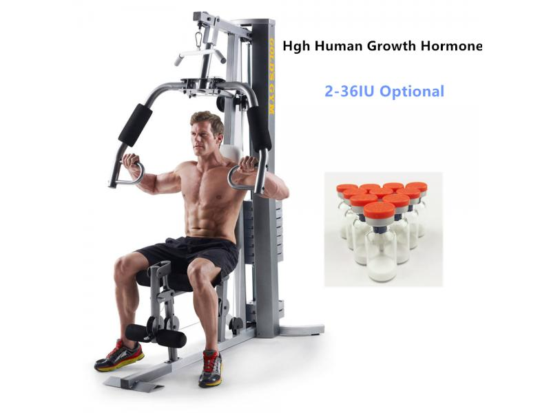 Human GH Hormone for Bodybuilding and Growth Lyophilized Peptides Powder  36IU