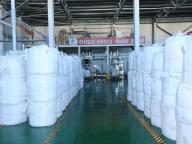 Qinghai Salt Industry Co., Ltd